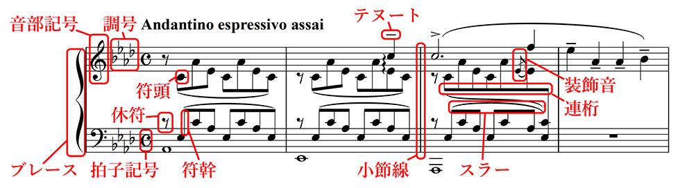 演奏しない人のための楽譜入門(1)