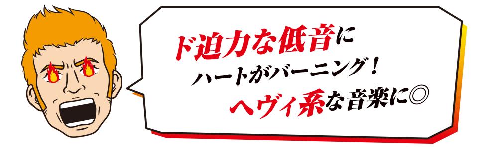 パワーコード兄貴(48)