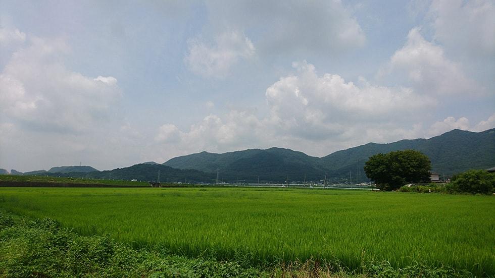 改ギ研究4(1)