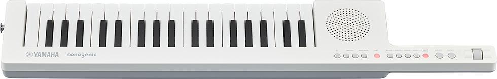 T&T番外編 電子キーボード新商品(2)